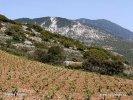 Nationalpark Ainos