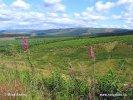 Nationalpark Northumberland