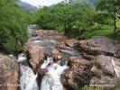 Schottland, Strathconon Forest