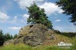 Naturdenkmal Domins Fels
