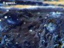 Blauer Rindenpilz