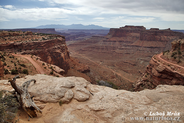 Canyonlands, Utah (Utah, USA)