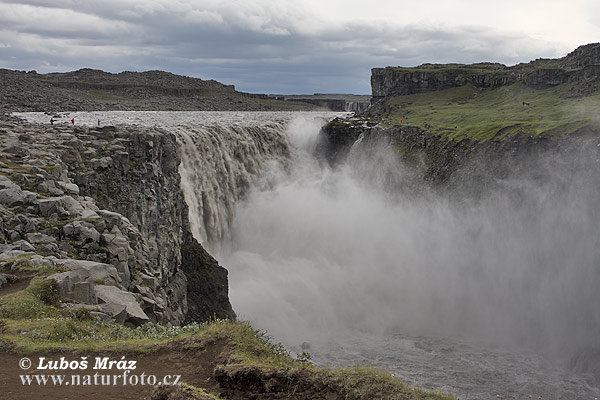 Dettifoss wasserfall (IS)