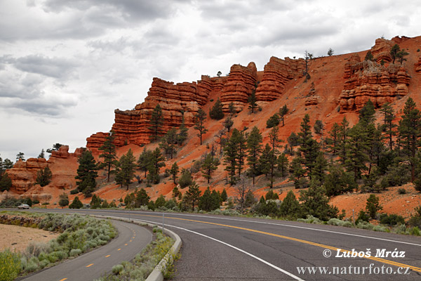 Red Canyon (Utah, USA)