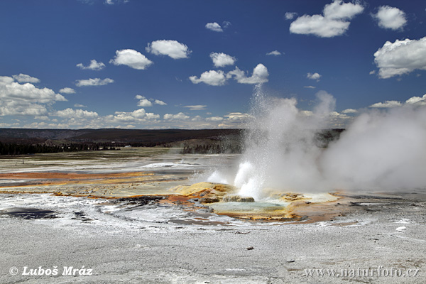 Yellowstone, Geysir (Wyoming, USA)