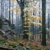 Fabián Naturschutzgebiet
