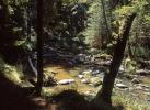 Fluss Dračice