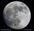 Mond - Vollmond