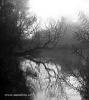 Sonnenaufgang auf dem Fluss